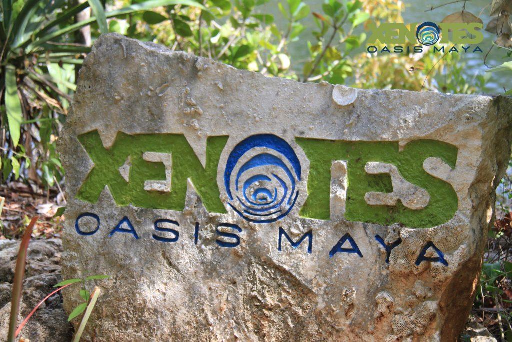 xenotes cenote tour riviera maya